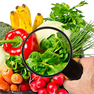 Bild mit Gemüse unter der Lupe